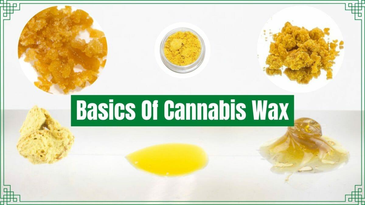 basics of cannabis wax