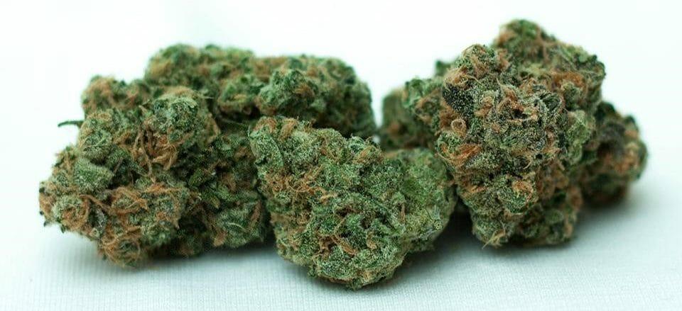 Cannabis Blue Dream Nugs