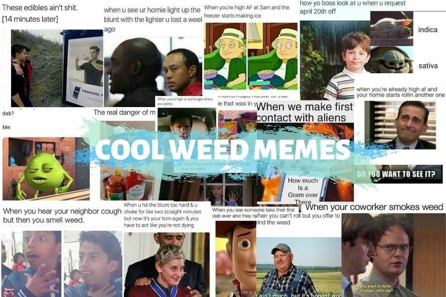 Ten Weed Memes Cover