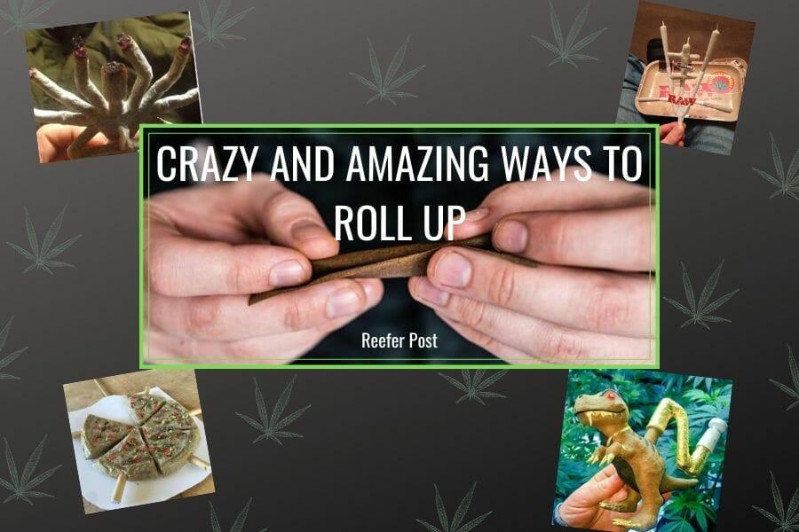 Crazy Rolls Part 2