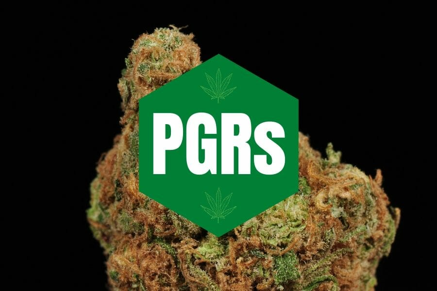 PGRs Cover