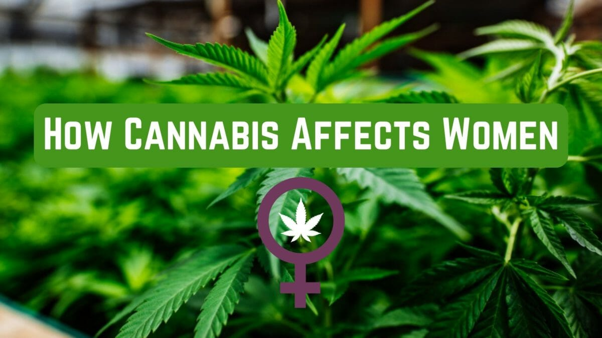 Cannabis Affects Women