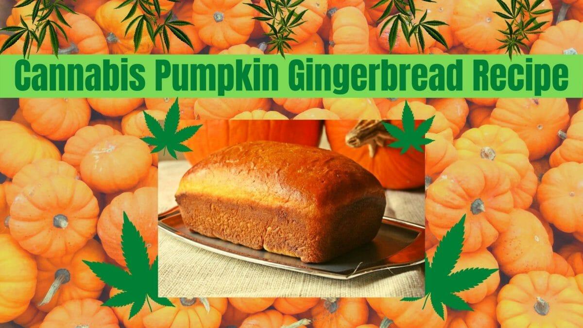 Cannabis Pumpkin Gingerbread