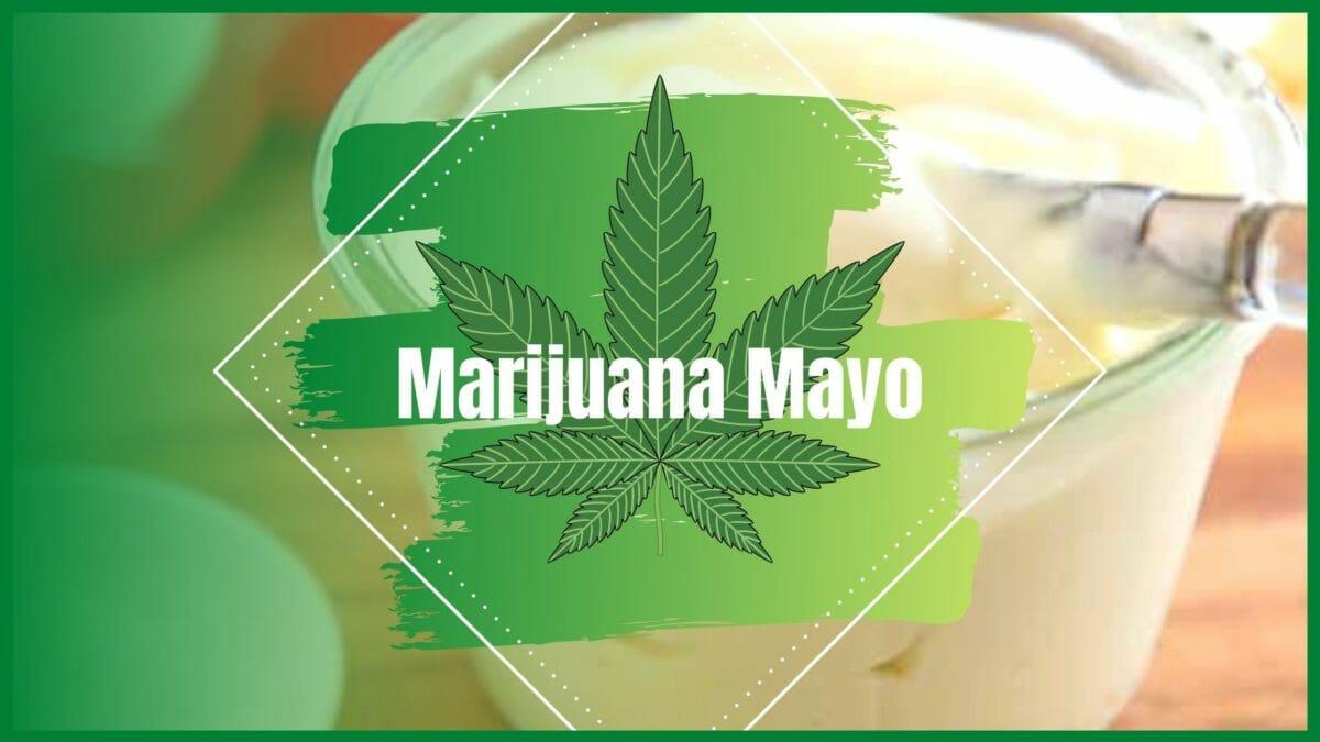 Marijuana Mayo Recipe